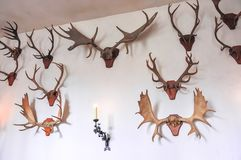 Deer horns antlers on walls of Hampton Court palace, London, UK royalty free stock photos