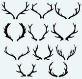 Deer horns royalty free illustration