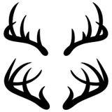 Deer Horns Stock Photos