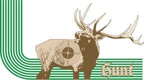 Deer hunt Stock Image