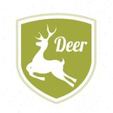 Deer hunt design Royalty Free Stock Image