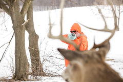 Deer hunter taking aim at a whitetail deer Royalty Free Stock Photo