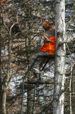 Deer Hunter. A young Deer Hunter in a tree stand in Minnesota hunting White-tailed deer Royalty Free Stock Photos