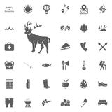 Deer icon. Camping and outdoor recreation icons set.  Stock Images