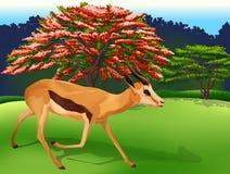 A deer. Illustration of a deer and tree stock illustration