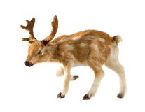 Deer Isolated on White. Cute Christmas toy deer isolated on white Royalty Free Stock Images