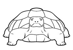 Turtle. Illustrator desain .eps 10 Stock Illustration