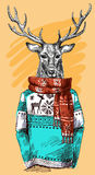Deer in knitted sweater. Vector illustration for greeting card, poster, or print on clothes. Fashion Style drawing. Hipster Stock Image