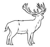 Deer. Laurel illustrator desain .eps 10 Royalty Free Stock Image