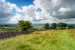 Deer Leap in the Mendips Stock Photos