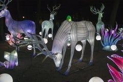 DEER luminous ornaments stock photos