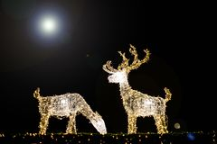 Deer made from light Christmas decorations. Christmas lights decorations dark background full moon Royalty Free Stock Photo