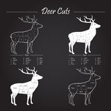 Deer meat cut scheme - elements on blackboard Stock Image