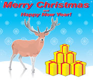 Deer and Merry Christmas. Deer stands near gifts for Christmas and New Year Royalty Free Stock Image