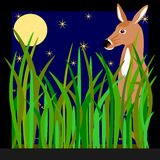 Deer in moonlight Royalty Free Stock Image