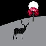 Deer in the moonlight Royalty Free Stock Image