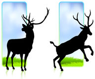 Deer with Nature Banners Stock Photo