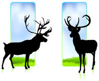 Deer with Nature Banners Royalty Free Stock Photos