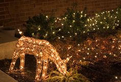 Deer (outdoor christmas lights) Stock Photo