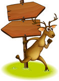 A deer passing the empty wooden arrowboard Stock Photo