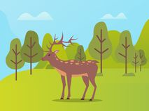 Natural Park with Biodiversity for Deer Animals. Deer on pasture vector, animal with furry coat and horns in natural park. Forest with trees and hills stock illustration