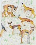 Deer pencil drawing Royalty Free Stock Photo