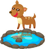 Deer with pond Royalty Free Stock Images