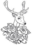 Deer, roses Royalty Free Stock Photography