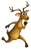 A deer running Stock Images