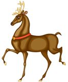 Deer of Santa Claus Royalty Free Stock Photos