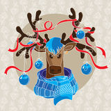 Deer in scarf. Christmas card with reindeer in scarf and decorated antlers Royalty Free Stock Photo