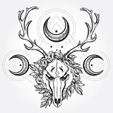 Deer scull  with branches and ornate moons. Stock Photo