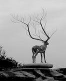 Deer sculpture on rock platform. Metal sculpture of a deer with huge antlers standing on a rock platform Royalty Free Stock Image