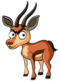 Deer with serious face. Illustration Stock Images