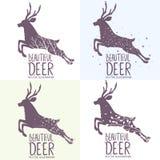 Deer set Royalty Free Stock Photo