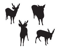 Deer Set Silhouettes Stock Images
