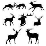 Deer set vector. Deer set of black silhouettes. Icons and illustrations of animals. Wild animals pattern vector illustration