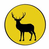 Deer  shadow and yellow circle. Deer shadow and yellow circle and white background Stock Photos