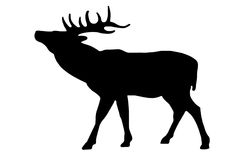 Deer sign Royalty Free Stock Photography