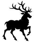 Deer  silhouette Stock Photos