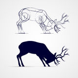 Deer Silhouette. Horned Deer Silhouette with Sketch Template on Gray Background Stock Photos