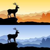 Deer silhouette landscape nature sunset sunrise illustration Stock Photos