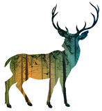Deer. Silhouette of a deer with pine forest and birds, white background, illustration vector illustration