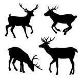 Decoration, elegance, horned, object, shadow, buck, doe, big, vintage, cervus, cute, dappled, engraving, graceful. Deer, silhouette vector head forest Royalty Free Stock Image
