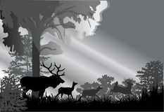 Deer silhouettes in grey forest Royalty Free Stock Photos