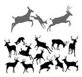 Deer Silhouettes. Including fawn, doe bucks and stags in various poses. Includes family group of stag doe and fawn running and jumping together Royalty Free Stock Images