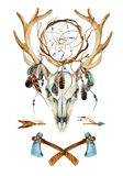 Deer skull. Animal skull with dreamcatcher. Royalty Free Stock Images