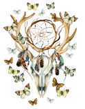 Deer skull. Animal skull with dreamcather and butterfly. Royalty Free Stock Image