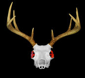 Deer Skull with Glowing Red Eyes Stock Photo