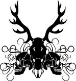 Deer skull and human skull composition Stock Images